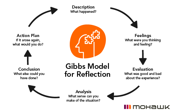 EL Gibbs Model for Reflection Pic.png