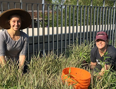 students gardening sustainably