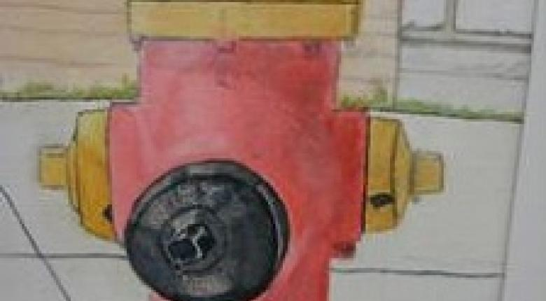 Watercolour Painting - Fire Hydrant