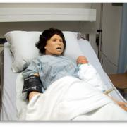 Hi-fidelity simulation model of a women and her baby
