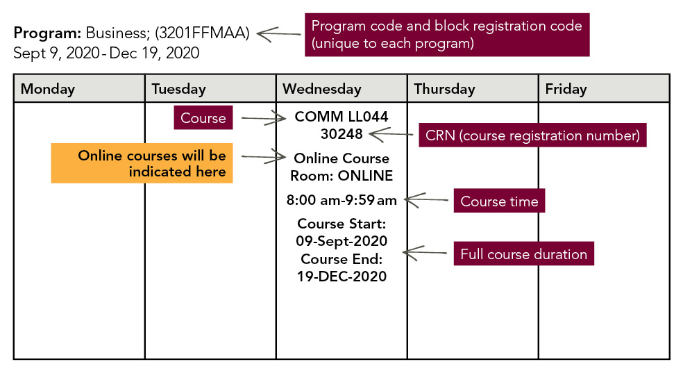 Timetable for an online course with instructions explaining each section